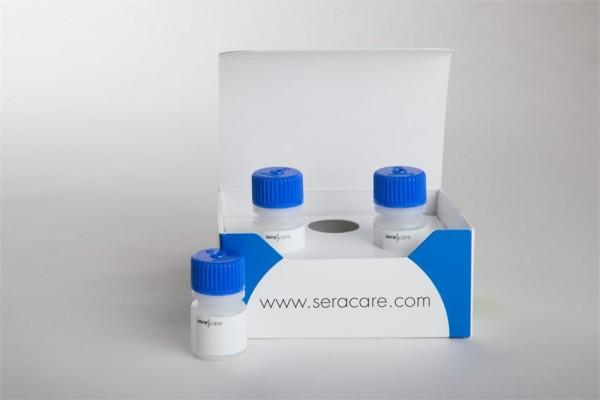 ACCURUN 155 Series 5000 Syphilis (ATA) Positive Control